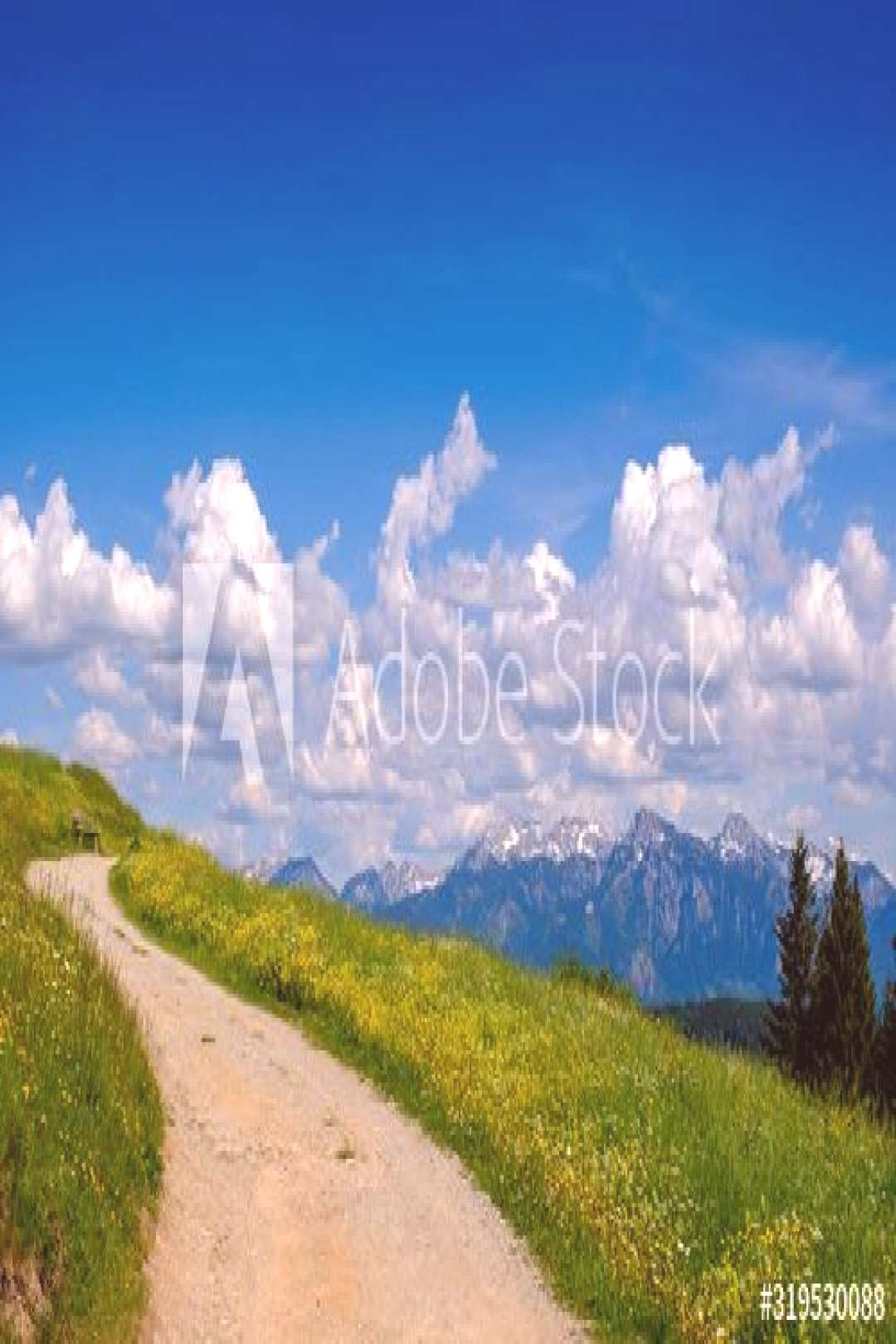 Germany, Swabia, Alpine trail in spring with clouds over Allgau Alps in background ,
